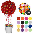 Sweet/Candy Tree Easy DIY Kit INCLUDING 100 Chupa Chups Lollies - Colour Choice