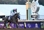 ARROGATE 18 RIDDEN BY MIKE SMITH (HORSE RACING) KEYRINGS-MUGS-PHOTO PRINTS
