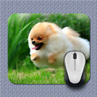 Animal Dog Fast Run Gamming Mouse Mats Lex39 Mouse Pad