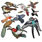 "TROPICAL BIRDS iron on patches - Choose 1 Bird or all 10 Styles 2-1/4"" to 4-1/2"""