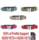 Внешний вид - NEW Kong Padded Comfort Dog Collar S M L XL Red Blue Green Pink Grey