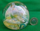SELECTION OF ASSORTED GLASS PAPERWEIGHTS (REF. 162).