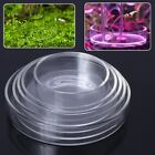 Aquarium Fish Tank Clear Glass Shrimp Feeding Food Dish Feeder Tray Container