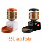 Programmable Auto LCD Display Pet Feeder Dog Cat  Food Bowl Timed Dispenser BR