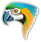 Watercolor Parrot Head Car Bumper Sticker Decal  -  3'' Or 5''