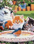 1pc cat kitty pet animal acrylic diy painting by number hobby kit home wall pict