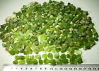 620-Gram Natural Peridot Rough Lot GOod Green Color Best for jewlry From Pakista