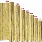 Professional Heavy Duty Bamboo Plant Support Garden Strong Canes 2/3/4/5/6/7 Ft