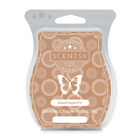 New Scentsy 3.2 fl oz Wax Bar Scented Spring and Summer & Disney!