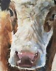 Cow Art PRINT Wall Art from original oil painting by James Coates 155