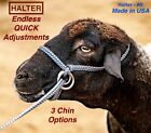 Halter All MEDIUM XLong LEAD, Dairy Beef Cow, Ave Steer Adjustable PATTERN USA