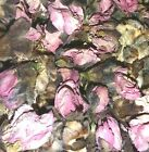 Organic Dried Peach Tree Flowers - Prunus persica - Apothecary Wicca Tea Herb