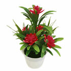 Realistic Decorative Artificial Flower Indoor Outdoor Plant Flower in Pot A6G8S