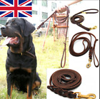 Pet Dog Genuine Leather Rope Harness Leash for Dogs Walking Training Belt Tools