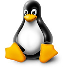 VPS Windows or Linux Virtual Private Server or Desktop all Versions picture