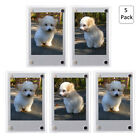 1-10 Pack Refrigerator Magnetic Photo Frames For instax mini film 3 inch picture