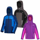 Regatta Aptitude IV Kids Waterproof Insulated Jacket