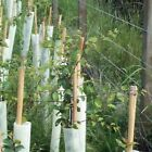 60cm Tubex Easywrap Rabbit Tree Shelter Guard + 90cm Bamboo Support Cane Package
