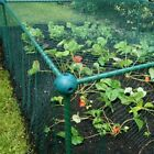 Fruit and Veg Protective Cage / With 20mm Mesh Bird Netting - 0.625m/2ft  high