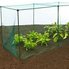 Fruit and Veg Protective Cage / With 20mm Mesh Bird Netting - 1.875m/6ft high
