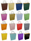 20 Twist Twisted Handle Paper Carrier Party Gift Bags With Tissue Paper