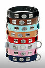 REAL LEATHER STAFF DESIGNER SMALL DOG FACE COLLAR  FITTED WITH CHROME,  8 COLORS