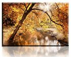 Wall Art Canvas Picture Print Creek Autumn  Framed  Ready to Hang