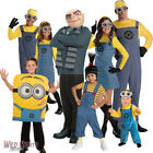 Fancy Dress Costume ~ Despicable Me Boys / Girls / Adult Character Outfits