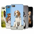 HEAD CASE DESIGNS DOG BREEDS CASE COVER FOR BLACKBERRY Z10