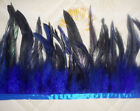 High quality!Beautiful Wild cock tail Feather Fringe Trim 6-8inch/ Blue