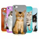 HEAD CASE POPULAR CAT BREEDS TPU GEL BACK CASE COVER FOR APPLE iPHONE 5S