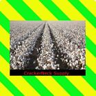 Cotton Seeds  100 seeds for $1.00 ~~ Other Quantities In My Store~~