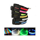 New 4 Size 6 Colors LED Flashing Lighting Safety Pet Dog Flat Collar S/M/L/XL