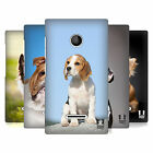 HEAD CASE DESIGNS POPULAR DOG BREEDS HARD BACK CASE FOR NOKIA LUMIA 435
