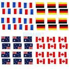 10PCs Handheld Hand Waving National Flags Small Banners & Poles - CHOOSE Country
