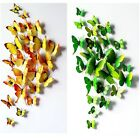 12pc Colourful 3D Artificial Butterfly for wedding cake topper /home decoration!