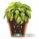 Planter Latina Decorative Self Watering plastic flower pot with water level