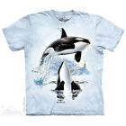 NEW UP AND OVER Orca Killer Whale Sealife The Mountain T Shirt Adult Sizes