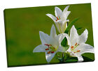 lily flowers canvas print picture gift idea mothers day