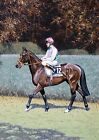 DANCING BRAVE AND PAT EDDERY ART PRINT 02 (HORSE RACING) GLOSSY PHOTO PRINT