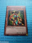Amazoness Fighter GLD3-EN005 Common Yu-gi-oh Card Mint Limited Edition New