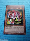 Amazoness Tiger GLD3-EN008 Common Yu-gi-oh Card Mint Limited Edition New
