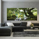 PANORAMIC Photo Wallpaper FOREST NATURE TREES Wall Mural (3457VEP)