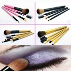 New 5 PCS Professional Makeup Brush Cosmetic Brushes Set for Blush Lip Beauty
