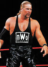 KEVIN NASH 01 (WRESTLING) PHOTO PRINT