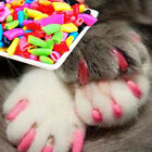 Fashion 20pcs Soft Cat Dog Pet Nail Caps Cover Claw Control Paws off Size S-L