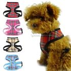 New Pet Dog Soft Adjustable Mesh Padded Harness Pet Walk Out Strap Vest Collar