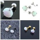 Fashion stainless steel jewelry White Fire Opal Earrings for womens