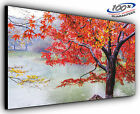 Autumn Red Panoramic Canvas Print Modern Art 4 Sizes to Choose Ready to Hang