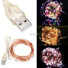 New Copper Wire 10M 100LEDs USB String Light Party Wedding Decor Lamp DZ88